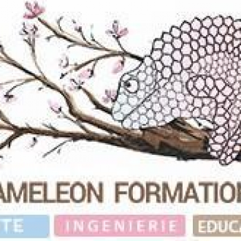 Cameleon formation